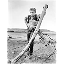 James Dean Leaning Against Fence Post 8 x 10 Inch Photo