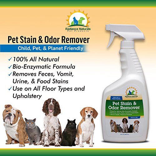 pet stain and odor remover 100 all natural bio enzymatic formula removes feces vomit. Black Bedroom Furniture Sets. Home Design Ideas