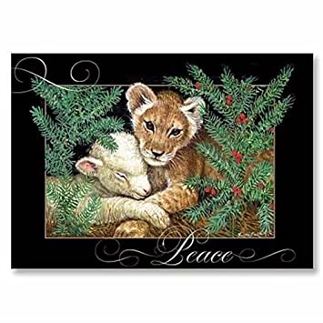 Amazon.com : Abbey Press Lion and Lamb Christmas Cards - Greetings ...