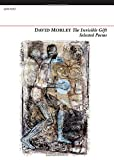 The Invisible Gift, David Morley, 1847772064