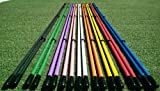 Golfnsticks Golf Alignment Sticks (2-pack) Alignment Rods are the #1 Golf Training Aids among tour players! Choose Your Favorite Color! (blue)