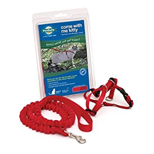 PetSafe Come With Me Kitty Harness and Bungee Leash, Harness for Cats, Small, Red/Cranberry