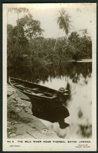 Outboard boat Milk River near Thermal Baths Jamaica RPPC postcard (Near Bath)