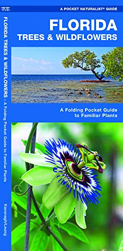Florida Trees & Wildflowers: A Folding Pocket Guide to Familiar Plants (Wildlife and Nature Identification)