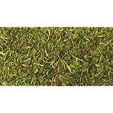 Herbal Tea: Memory Zest Tea (Organic)