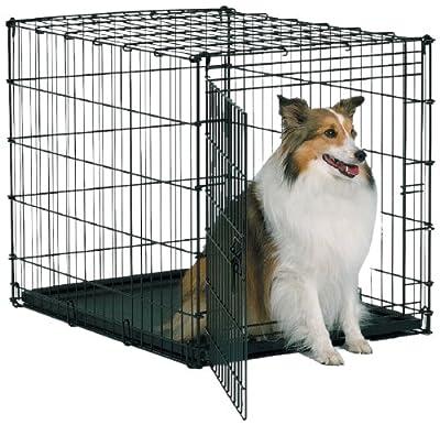 Midwest Starter Series Single-Door Drop-Pin Metal Dog Crate