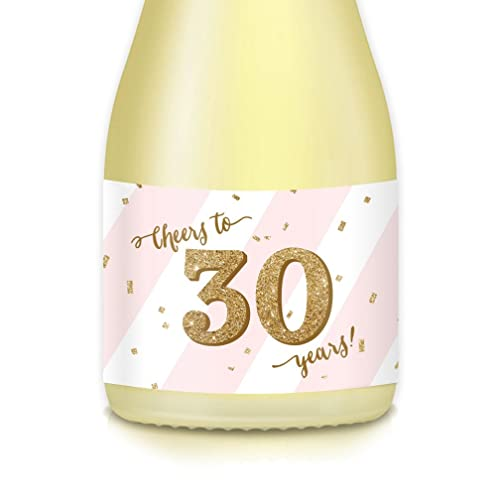 Womens 30th Birthday Womans Surprise Thirtieth Party Ideas Mini Champagne Wine Bottle Labels Cheers To THIRTY Years Celebrate 30 Old Mom Wife