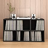 Way Basics 2-Shelf Vinyl Record Storage Cube and LP