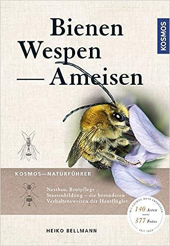 Bienen, Wespen, Ameisen: Staatenbildende Insekten Mitteleuropas ...
