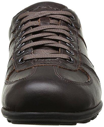 Timberland Ek Hookset Low Profile Leather Oxford, Scarpe stringate Uomo Marrone (Medium Brown)