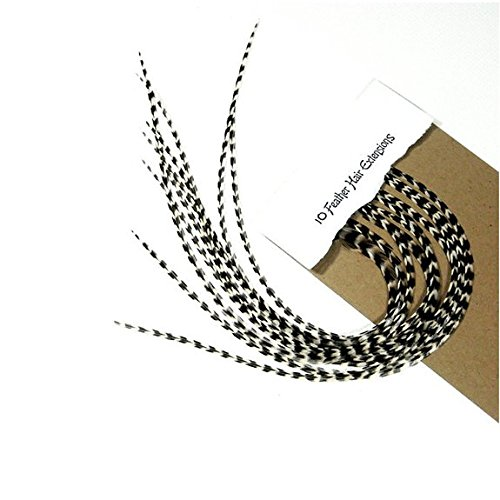 10 Feathers 7-10 inch Single Long Real Natural Black and White Stripped (Rooster Braid)