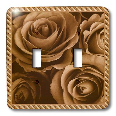 3dRose lsp_29943_2 Close Up Scene Of Dreamy Milk Chocolate Roses Surrounded By A Striped Frame Double Toggle Switch