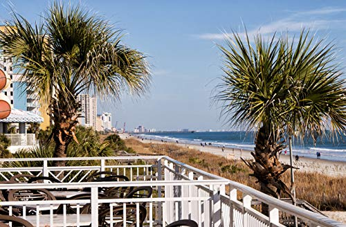 Myrtle Beach, South Carolina - Beach View from Balcony - Photography A-95392 95392 (16x24 SIGNED Print Master Art Print w/Certificate of Authenticity - Wall Decor Travel ()
