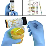 Complete 10-in-1 Urine Test Strips 100ct