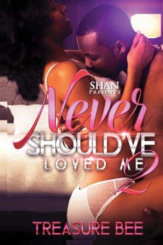 Never Should've Loved Me 2 ebook