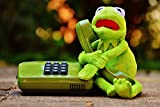 Home Comforts Framed Art for Your Wall Fig Phone Plush Kermit Funny Frog Animal Frogs 10x13 Frame