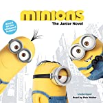 Minions: The Junior Novel | Sadie Chesterfield