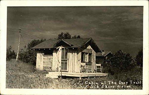 Cabin at The Deer Trail, North Shore Drive Michigan Original Vintage Postcard