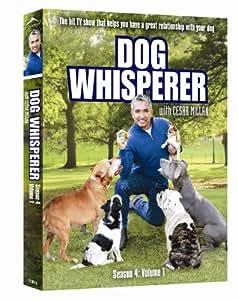 Dog Whisperer Season 4, Volume 1