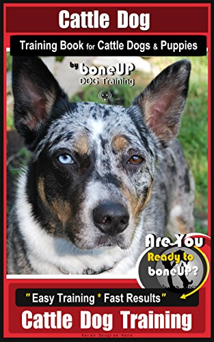 Cattle Dog Training Book For Cattle Dogs Puppies By Boneup Dog Training Are You Ready To Bone Up Easy Training Fast Results Cattle Dog Training