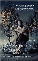 Realms of Shadow (Mondragoran Chronicles Book 2)