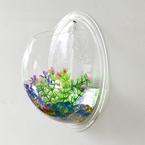 Fish Acrylic - 8