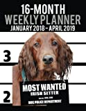 2018-2019 Weekly Planner - Most Wanted Irish Setter: Daily Diary Monthly Yearly Calendar Large 8.5