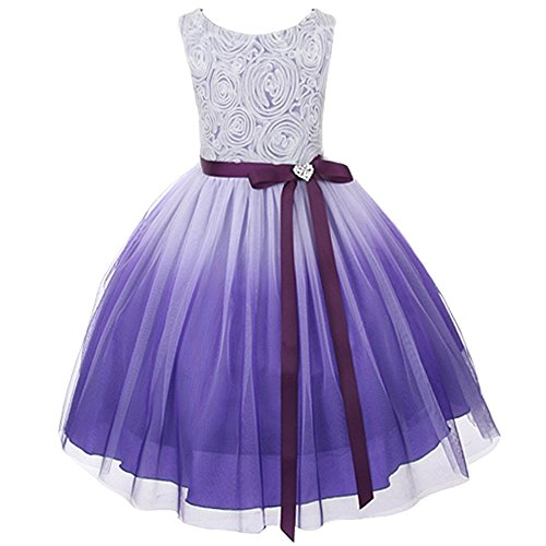 Dress Ombre Bubble (Purple Ombre Rosette Special Occasion Flower Girls Dress Christmas Wedding 2-14)