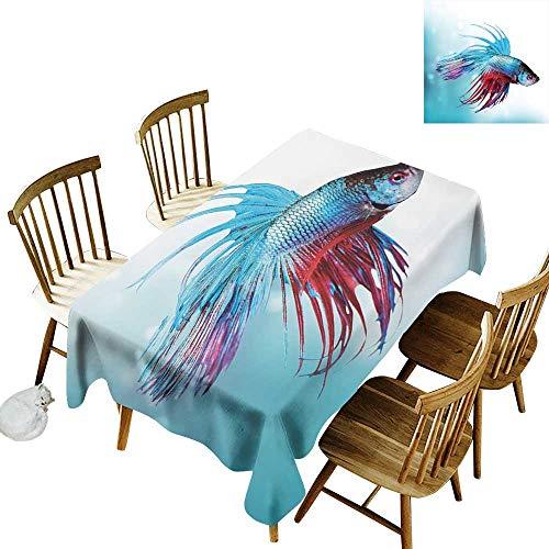 - Cranekey Picnic Rectangular Tablecloth W52 x L70 Aquarium Siamese Fighting Betta Fish Swimming in Aquarium Aggressive Sea Animal Sky Blue Dark Coral Clearable