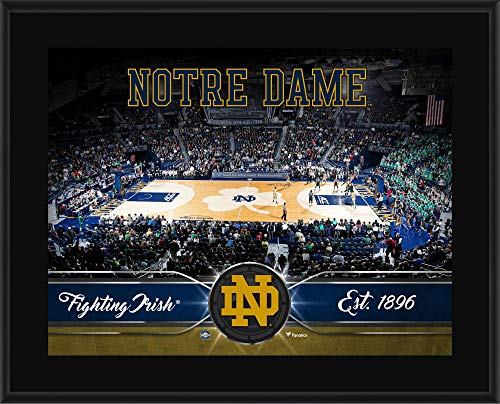 Notre Dame Fighting Irish 10.5