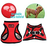 PET OPT Comfort Dog Mesh Harness Vest,Soft Double Padded Vest for Dog and Cat (XX-Small, Red)
