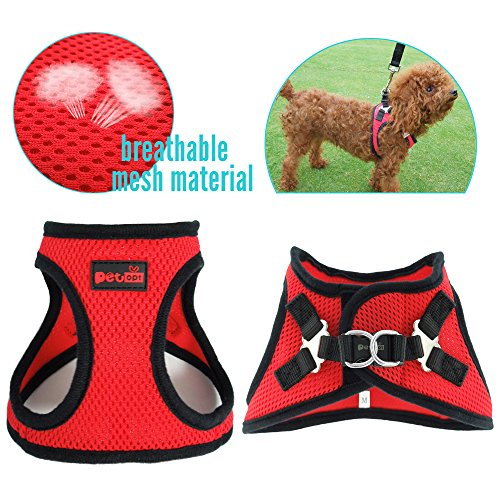 xx small puppy harness - 9