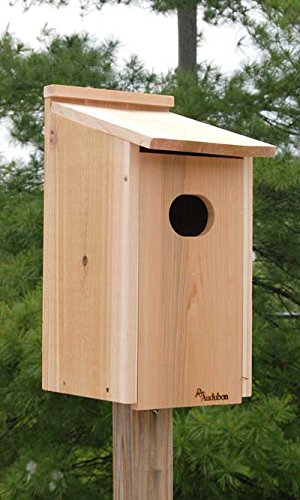 Wood Duck Nest Bird House (Wood Duck Nest)