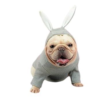 Pet Ropa para Perro de tamaño Mediano con diseño de Conejo Bulldog francés, Color Gris, Gris, Large: Amazon.es: Hogar