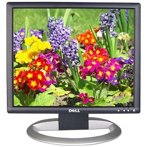 Dell UltraSharp 1704FPVt 17 Inch Flat Panel LCD Monitor