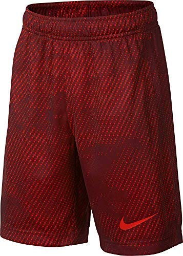 Nike Boy's Athletic Dry Printed Fly Comfortable Elastic Training Shorts with Pockets (Team Red/Team Red/Large)