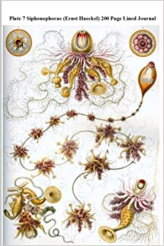 Plate 7 Siphonophorae (Ernst Haeckel) 200 Page Lined Journal: (Artforms of Nature 1904) Blank 100 page lined journal for your thoughts, ideas, and inspiration