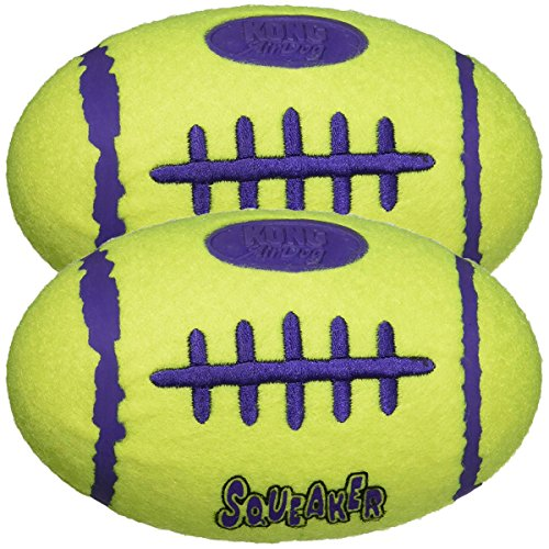KONG Air Dog Squeaker Dog Toy -