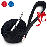 PetsLovers Durable Dog Leash   Strong Pet Lead   Padded Handle   6 Feet Long, 1 Inch Wide