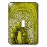 3dRose lsp_266900_1 Luxury Green Marble Agate Gem Mineral Stone Toggle Switch, Multicolor