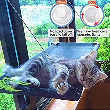 Itept Diy Cat Sunbath Bed Sunny Seat Window Perch Pet Resting Seat Shelves Hammock Suction Cups Mounted Large Kitties Sunny Bed Up To 55lb