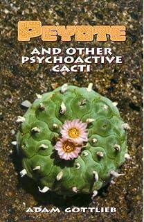 essay on cactus