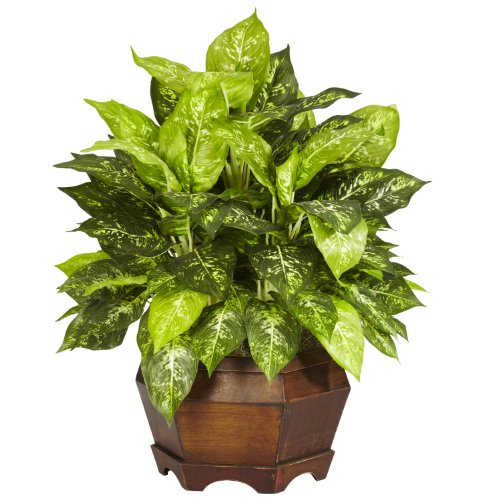 (Nearly Natural 6709 Variegated Dieffenbachia with Large Hexagon Decorative Silk Plant, Green)