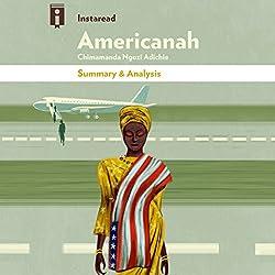 Summary & Analysis | Americanah, by Chimamanda Ngozi Adichie
