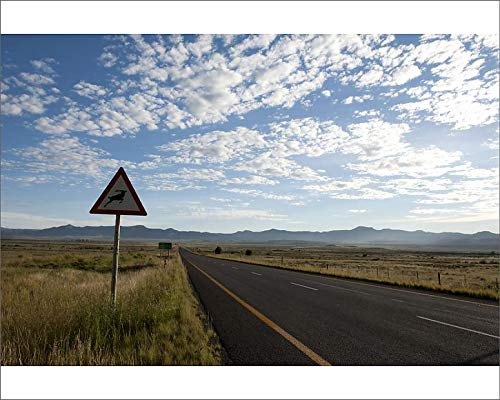 Media Storehouse 10x8 Print of Great Karoo Highway, a Road Less Travelled, Heads North (18247977)