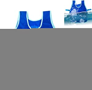 Wendysy Outdoor Riding Fishing Cooling Vest with 24 Ice Packs, Cooling Sport Vest for Men and Women