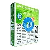 True Blue Replacement Air Filter for Trion Air Bear, 20x25x5