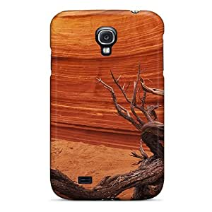 Forever Collectibles Driftwood Canyon Hard Snap-on Galaxy S4 Case