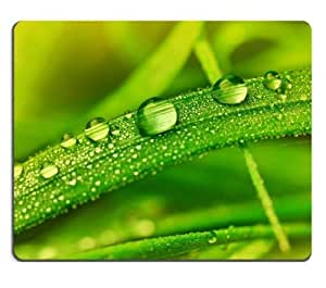 Grass Water Drops Macro Dew Mouse Pads Customized Made to Order Support Ready 9 7/8 Inch (250mm) X 7 7/8 Inch (200mm) X 1/16 Inch (2mm) High Quality Eco Friendly Cloth with Neoprene Rubber MSD Mouse Pad Desktop Mousepad Laptop Mousepads Comfortable Computer Mouse Mat Cute Gaming Mouse pad