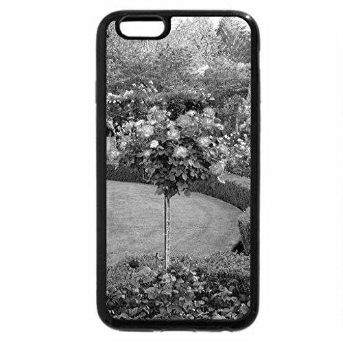 iPhone 6S Plus Case, iPhone 6 Plus Case (Black & White) - a rose garden